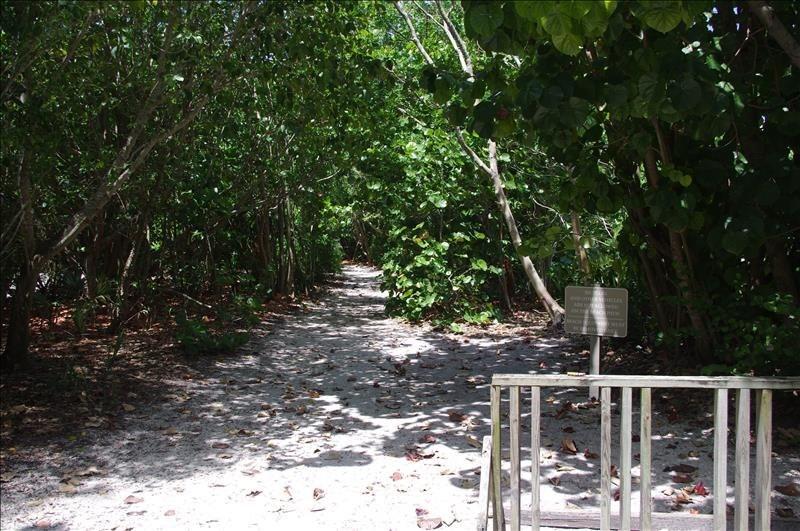 Walk or bike the beach access