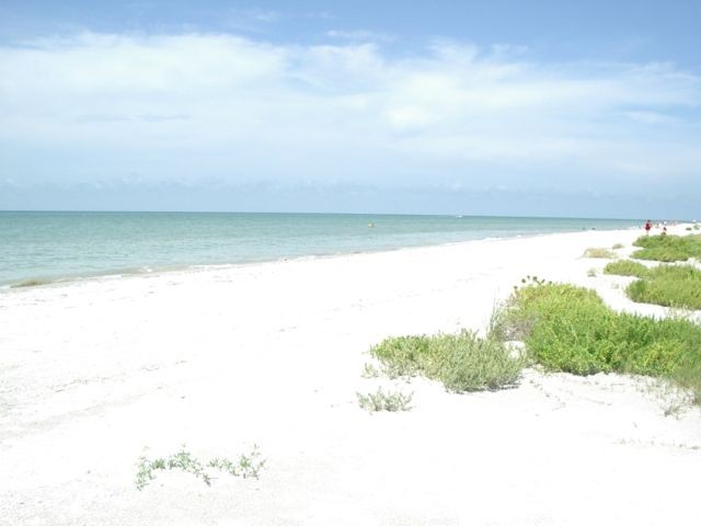 Sanibel's beaches are world-famous for their shells.
