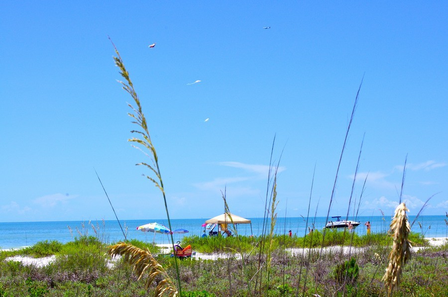 Picture yourself here! Shell, fish, swim, walk - enjoy!