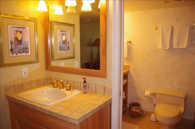 Single vanity in dressing area