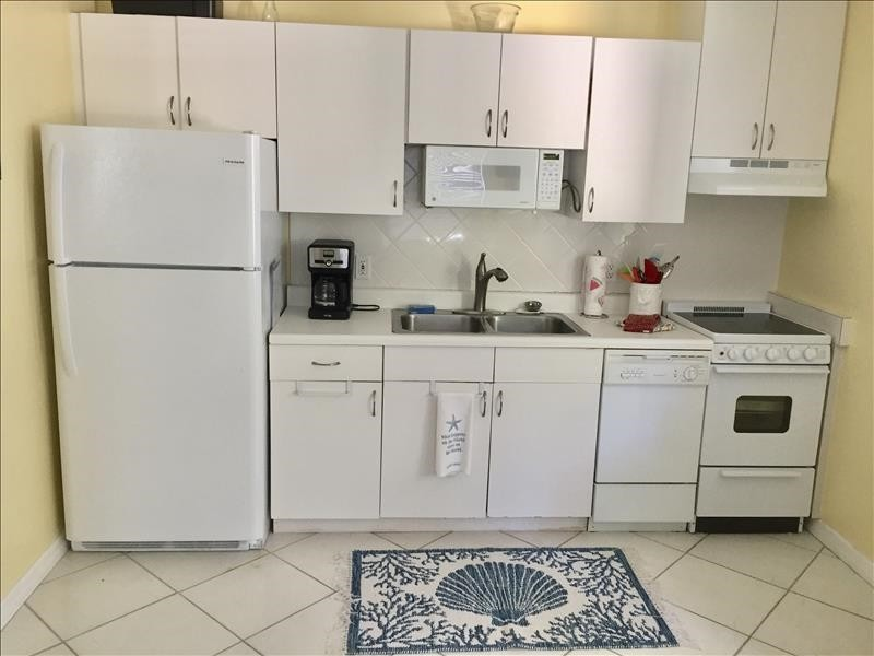 Fully-equipped kitchen with dishwasher, smooth stove top