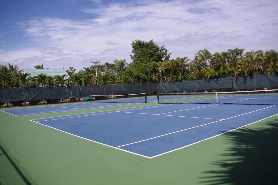 Tennis, anyone? Bring your racquet!