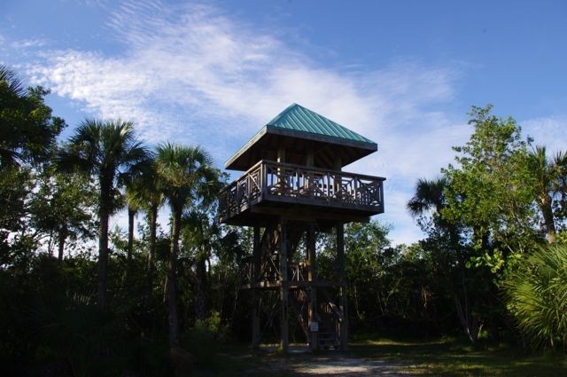 Birdwatch & look out to Clam Bayou & the Gulf from the Tower